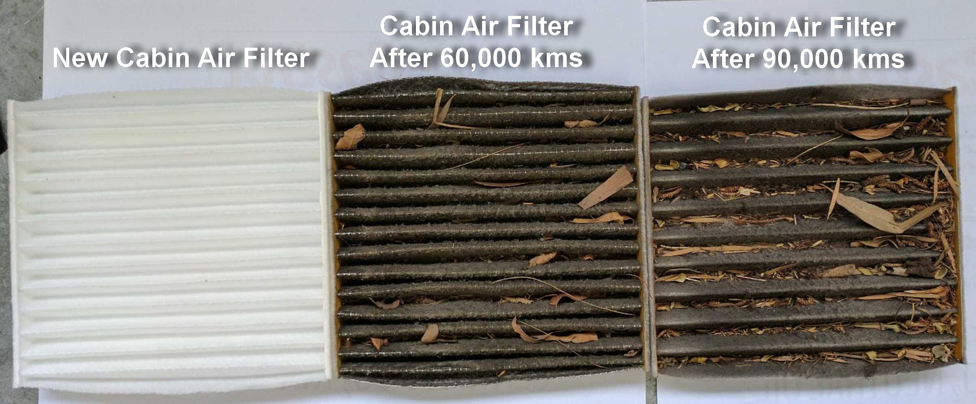 Cabin Air Filter Contamination Comparation